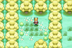 Pokemon FireRed 03